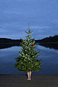 Woman standing behind Christmas tree on jetty - PSTF00056
