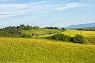 Italy, Tuscany, Val d'Orcia, cyclists in field landscape - LOM00585