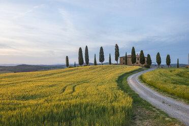 Italy, Tuscany, Val d'Orcia, farmhouse at sunset - LOMF00591