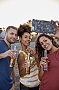 Three friends with beer bottles taking selfie on the beach - PACF00042