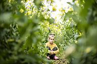 Serious girl sitting in rape field - MOEF00005