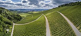 Germany, Stuttgart, aerial view of vineyards at Kappelberg - STSF01242