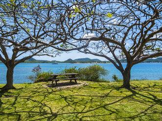 Caribbean, Martinique, view on Sainte-Anne - AMF05401
