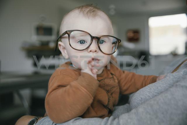 Baby boy wearing oversized glasses - MFF03678