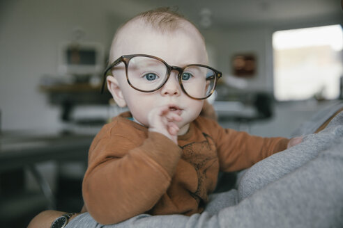 Baby boy wearing oversized glasses - MFF03678