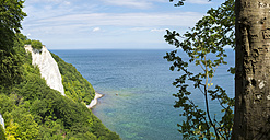 Germany, Ruegen, Jasmund National Park, chalk cliff Koenigsstuhl - FRF00525