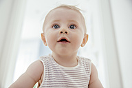 Portrait of curious baby boy - MFF03687