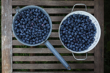 Colander and saucepan of blueberries on garden table - EVGF03236