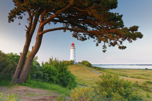Germany, Mecklenburg-Western Pomerania, Hiddensee, Dornbusch lighthouse on the Schluckswiek - GFF01008