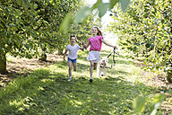 Two happy sisters running with dog on meadow - SHKF00779
