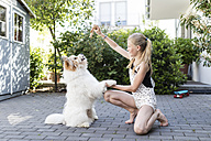 Girl playing with dog in the yard - SHKF00782