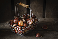 Sweet chestnuts in wire basket - EVGF03238