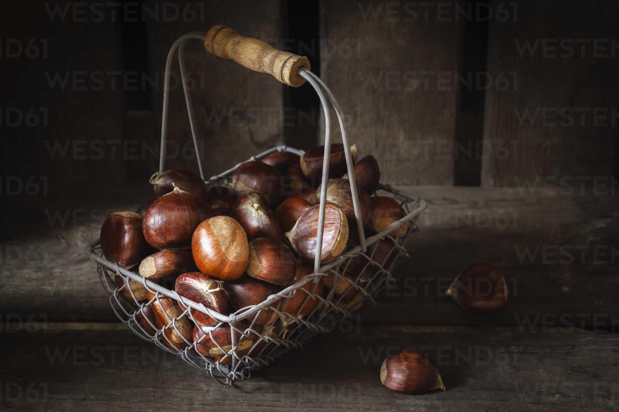 Sweet chestnuts in wire basket - EVGF03238 - Eva Gruendemann/Westend61
