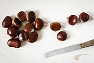 Sweet chestnuts and knife - EVGF03241