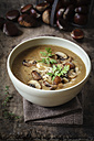Sweet chestnut mushroom soup - EVGF03244