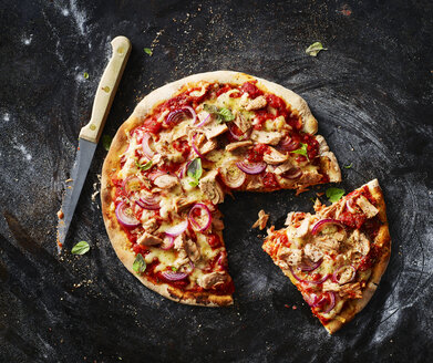 Sliced pizza with tuna - KSWF01825