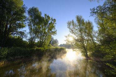 Germany, Franconian Lake District, Muhr am See, Altmuehlsee at sunrise - SIEF07456