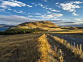New Zealand, South Island, Canterbury Region, sunset near Lake Tekapo - STSF01261