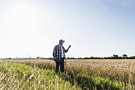 Senior farmer standing in front of a field examining ears - UUF11184