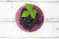 Bowl of organic blackberries on wood - LVF06240