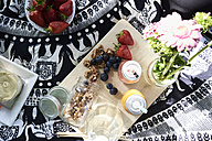 Healthy picnic in a park in summer - IGGF00027