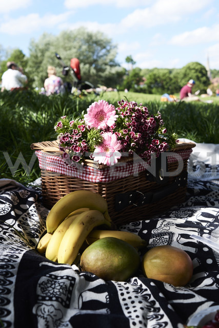 Healthy picnic in a park in summer - IGGF00030