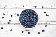 Bowl of blueberries on white wood - LVF06247