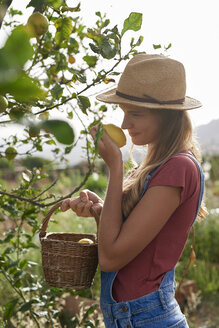 Young woman smelling a picked lemon - PACF00056