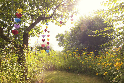Heart-shaped garland made of paper hanging in garden - CMF00707