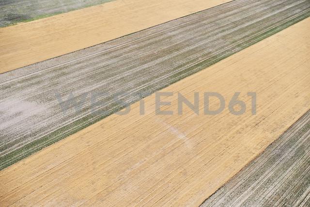 USA, Aerial photograph of contour farming after harvest in Western Nebraska - BCDF00316