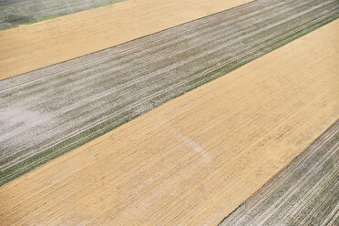 USA, Aerial photograph of contour farming after harvest in Western Nebraska - BCDF00316