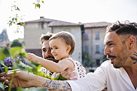 Gay couple showing flowers to their daughter in the garden - MRAF00230