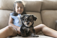 Portrait of puppy sitting on couch with little girl in the background - JASF01799