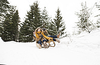 Happy young couple on sledge in winter forest - HAPF02044