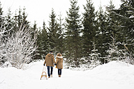 Back view of young couple in love with sledge in winter forest - HAPF02047