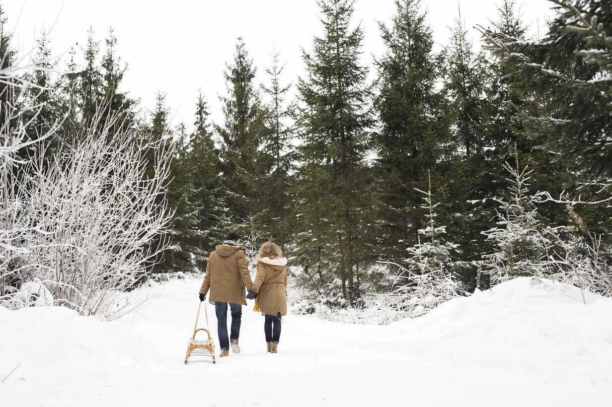 Back view of young couple in love with sledge in winter forest - HAPF02047 - HalfPoint/Westend61