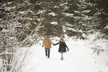 Back view of young couple walking hand in hand in winter landscape - HAPF02083