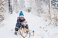 Little boy with his dog on a sledge in snow - MJF02165