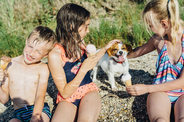 Three children eating icecream and playing with dog on the beach - MJF02183