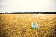 Globe in grain field - MOEF00072