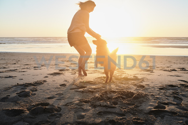 Portugal, Algarve, woman with dog on the beach at sunset - JRF00342