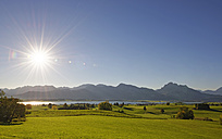 Germany, Bavaria, Allgaeu, Lake Forggensee in backlight - LHF00538