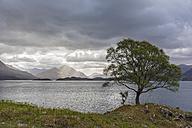 UK, Scotland, Loch Shieldaig - FOF09340