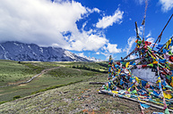 China, Yunnan, Lijiang, Tibetan Temple Yak Meadow and mountainscape - THA02013