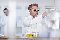Scientist working in lab putting flask in clamp - ZEF14604