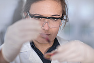 Scientist working in lab with a petri dish - ZEF14610