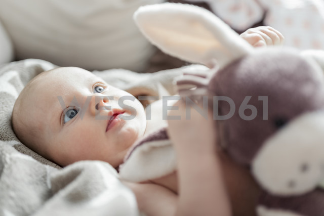 Portrait of baby girl with soft toy - CSTF01404