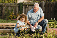 Little girl with her uncle in the garden - NMSF00167