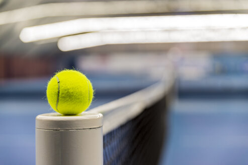 Tennis ball on tennis net - FRF00552