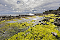 UK, Scotland, Inner Hebrides, Isle of Skye, Staffin Bay, Staffiin Beach - FOF09399